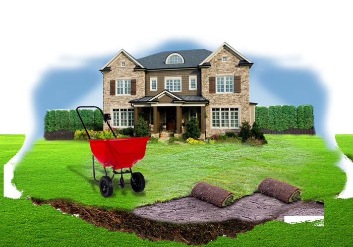 fertilizing-700